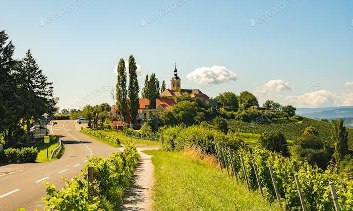 Weinberg auf österreichischer Landschaft mit einer Kirche im Hintergrund.