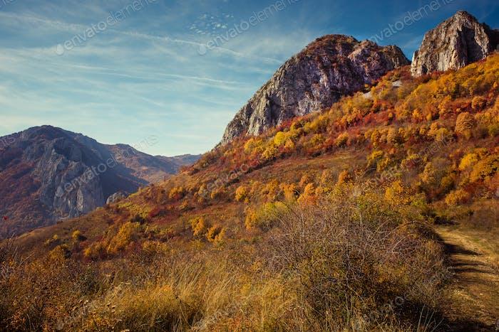 Berg-Herbstlandschaft mit bunten Wald