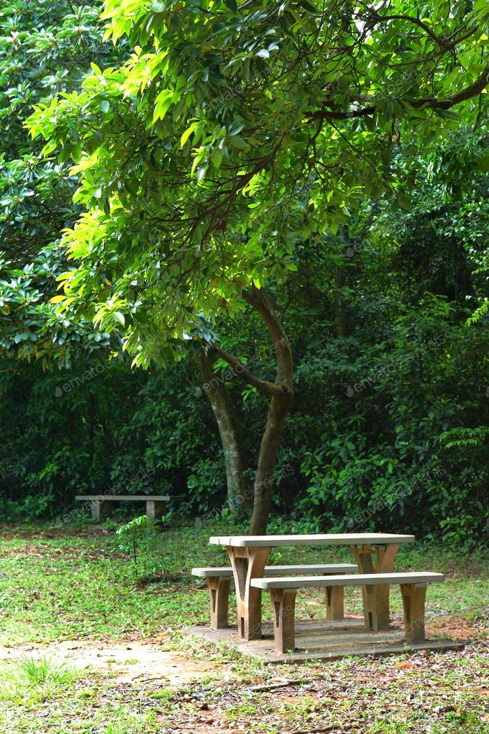 Picknick-Platz