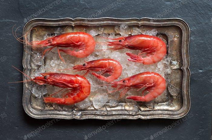 Raw shrimps on ice