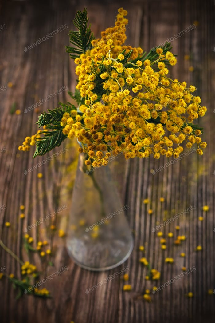 branch of a yellow mimosa flowers in transparent glass vase