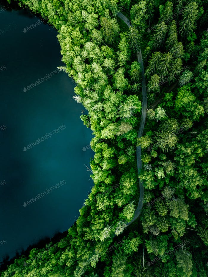 Aerial top view of country road in green summer forest and blue lake. Rural landscape in Finland.
