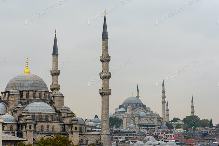 New Mosque and Suleymaniye Mosque