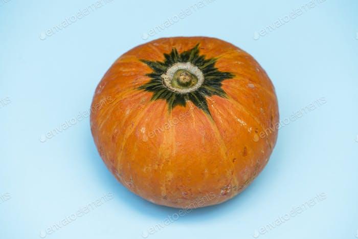 Closeup of fresh pumpkin on blue background