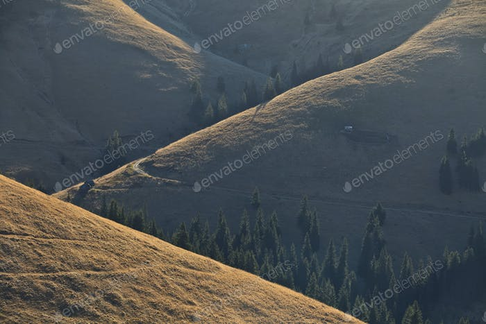 morning light on a hill