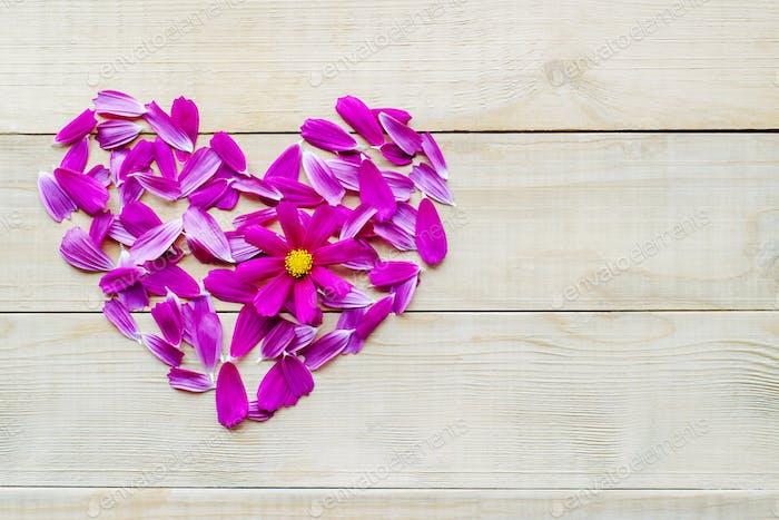 flower heart shape lay on wooden background