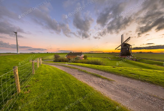Historic windmill in grassy dairy landscape