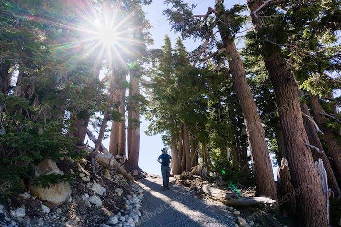 Hiking trail to Lassen Peak; Lassen Volcanic National Park, Northern California