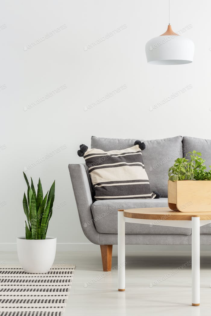 Lamp above wooden table with plant in simple living room interio