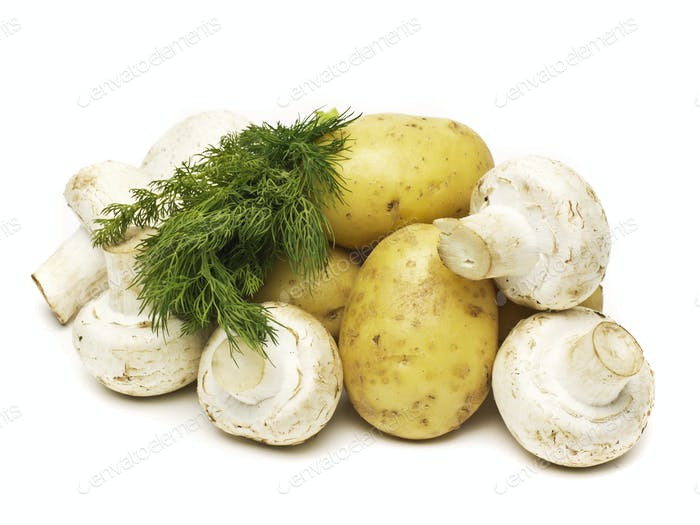 raw champignon with potato isolated
