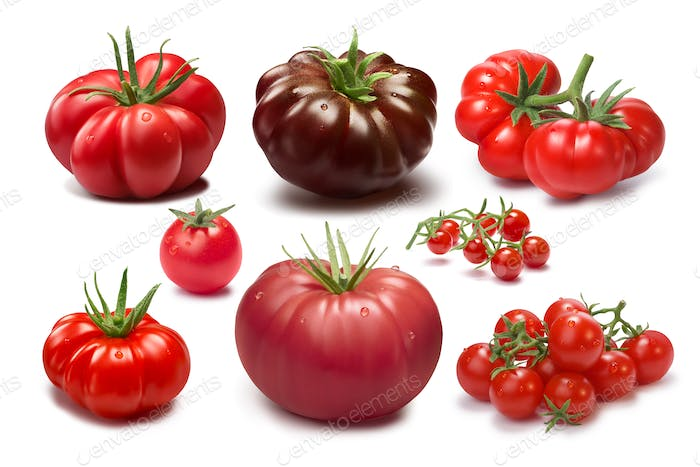 Set of different tomato varieties