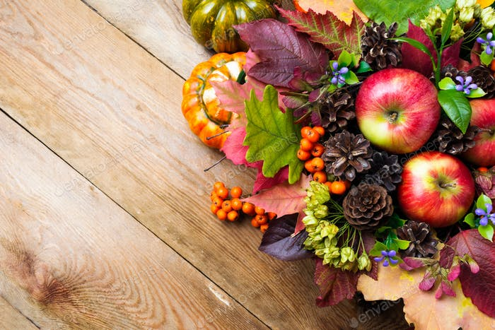 Fall background with blue flowers and colorful leaves, copy spac