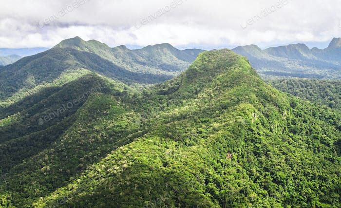 Aerial View of Mountainous Jungle in Belize