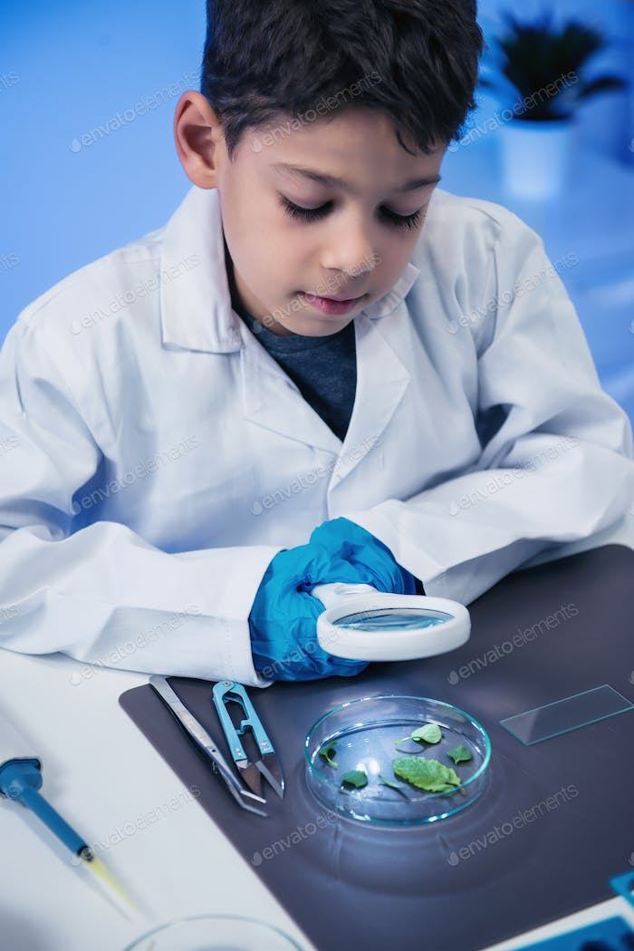 Schoolboy using magnifing glass, laboratory education concept