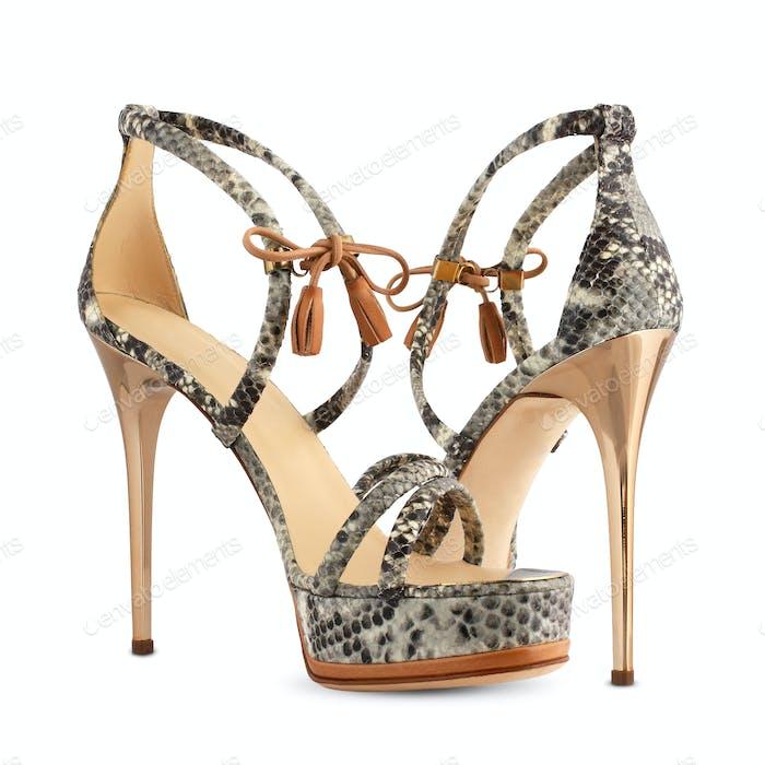 Women's shoes of snakeskin high heels