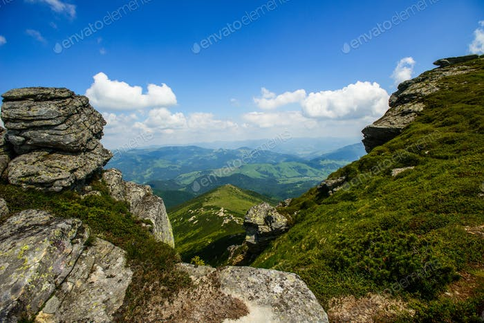 Summer landscape in the mountains