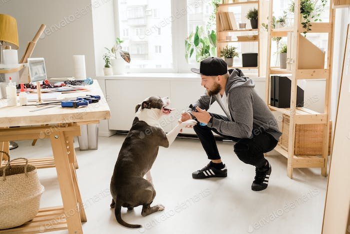 Casual guy squatting while playing with his pet at home by workplace