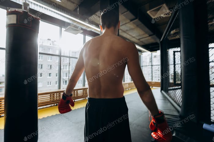 The back of sportsman standing next to to the punching bags in the gym