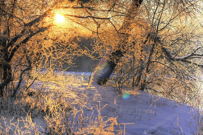 Magical snow landscape a golden sun