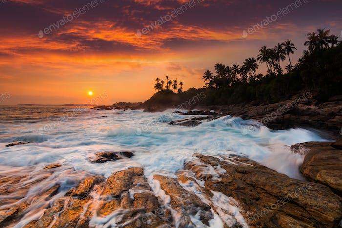 Romantischer Sonnenuntergang an einem tropischen Strand mit Palmen