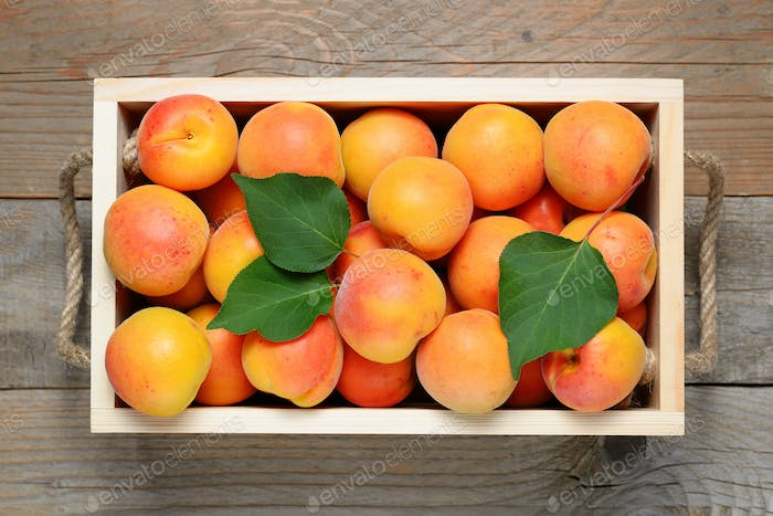Apricots in wooden box close-up