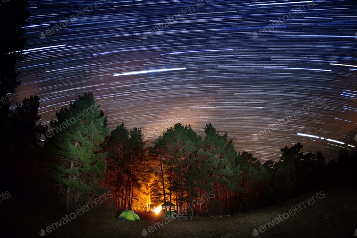 Star tracks over the forest