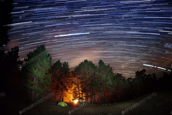 Sternspuren über den Wald