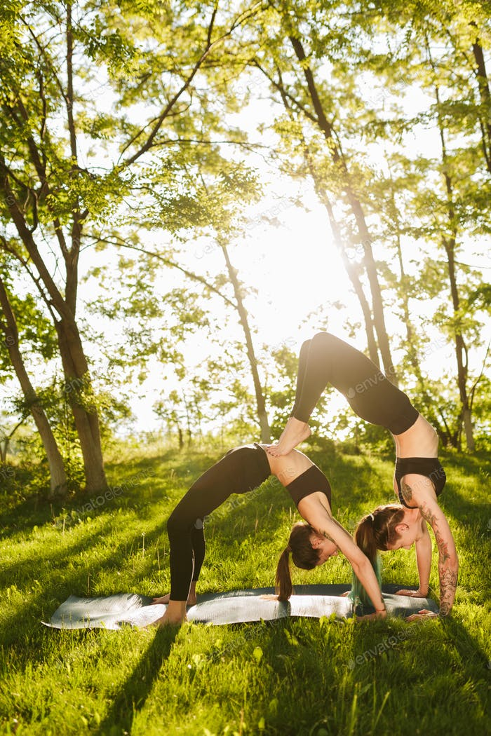 Young pretty ladies standing in bridge poses while training yoga together outdoors
