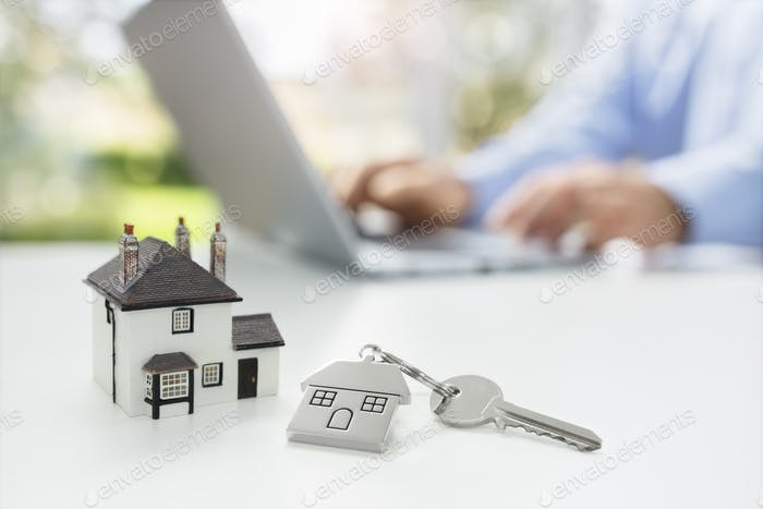 Searching the internet for real estate or new house
