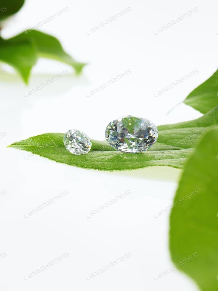 Stillleben, Grünblättriges Blattwerk und Edelsteine mit reflektierenden Oberflächen geschnitten,