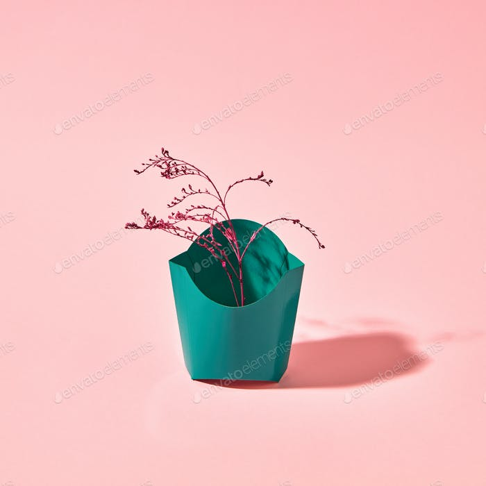 A colored branch in a green cardboard box on a pink background with copy space. Creative layout for