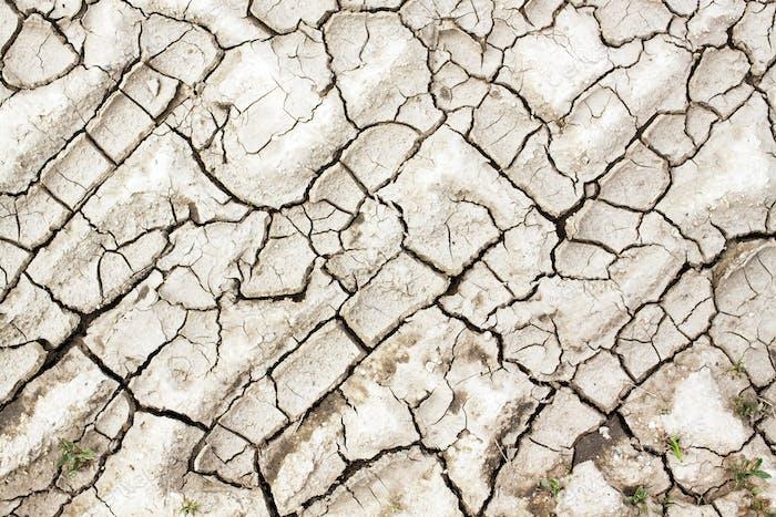 Textura agrietada del suelo
