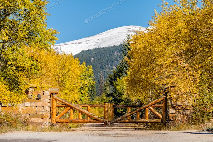Rustic gate made of logs on unpaved road