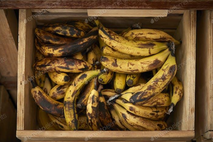 Display Of Bananas In Sustainable Plastic Packaging Free Grocery Store