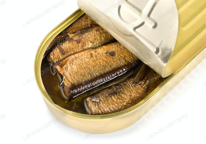Canned sardines isolated