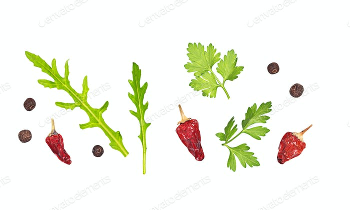 Herbs and spices isolated on white without shadows