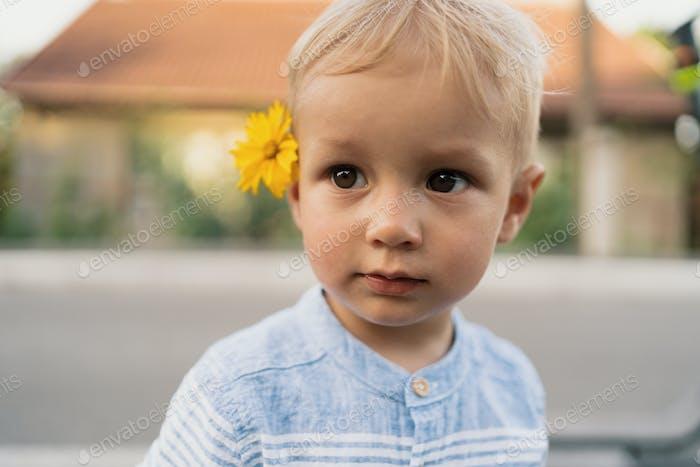 Portrait little cute boy