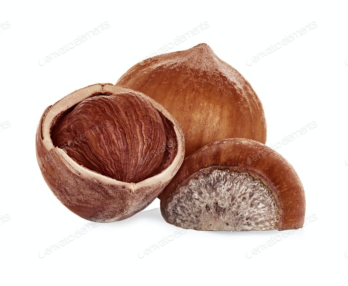 Hazelnuts isolated on a white background