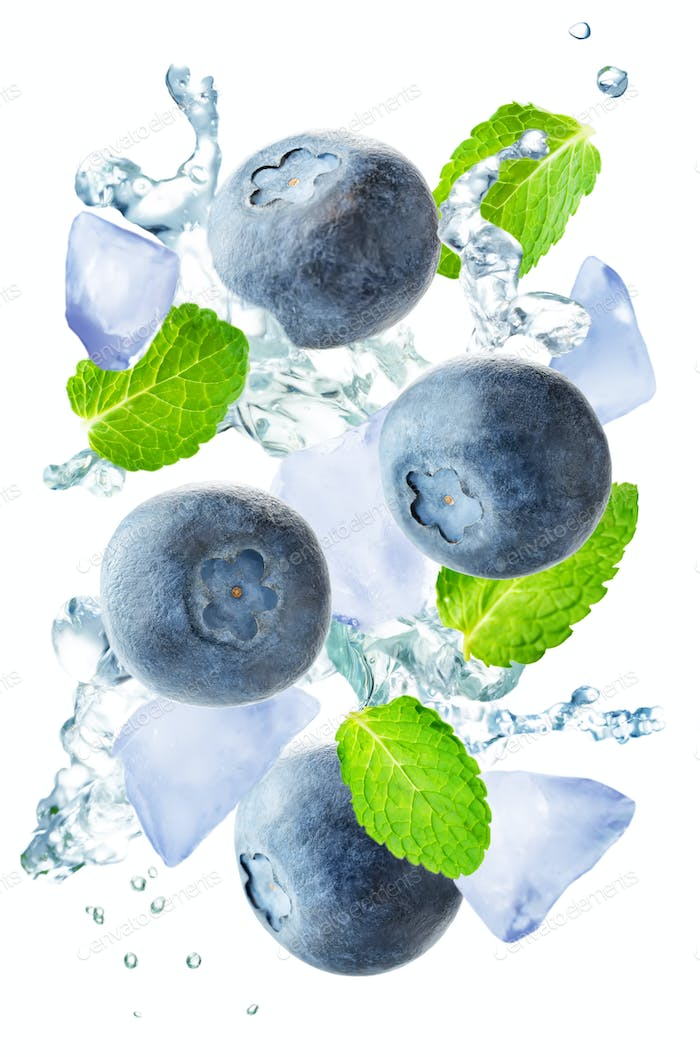 Flying blueberry with mint leaves and a spray of water