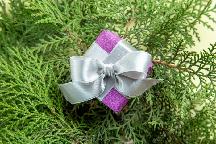 top view cute little present with green branches on light background xmas gift color new year photo