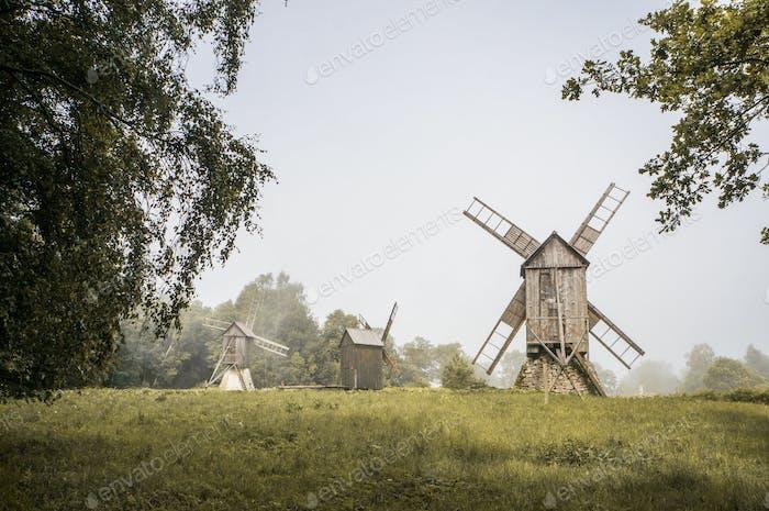 beautiful landscape view of windmills in green field, Estonia, Tallinn