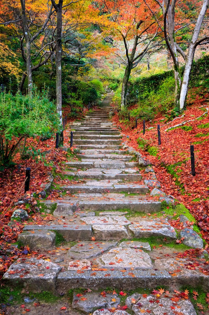 Stairway in autumn, Jojakkoji temple, Arashiyama, Kyoto, Japan