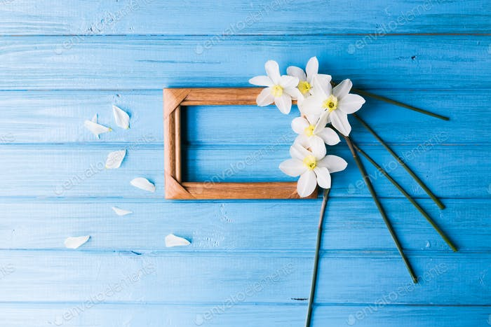 Daffodils with a wooden photo frame on a blue background