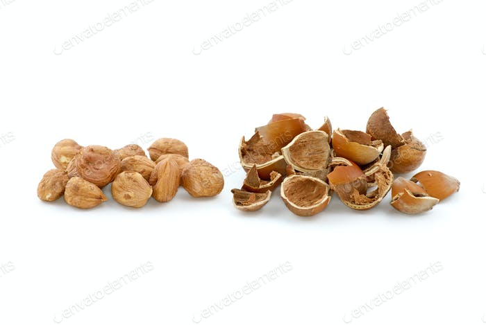 Pile of shelled hazelnuts and shells