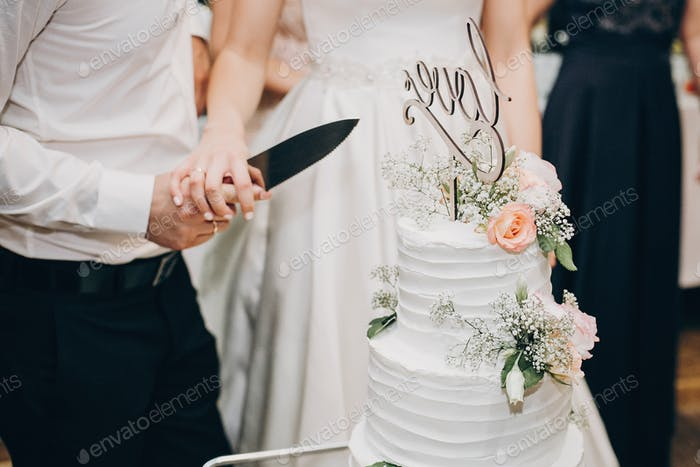 Bride and groom cutting stylish wedding cake at wedding reception
