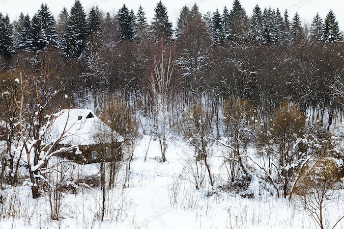 old typical house at the edge of forest in winter