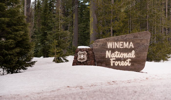 Winter Woods Winema National Forest Welcome Sign