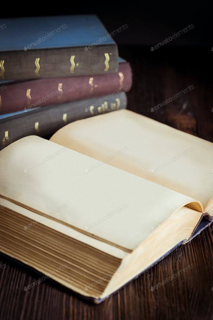 Open book in vintage light tone color