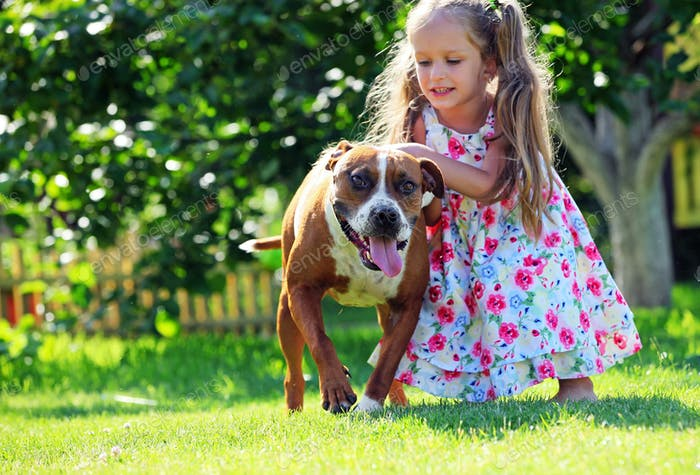 Cute little girl playing with her Staffordshire terrier dog