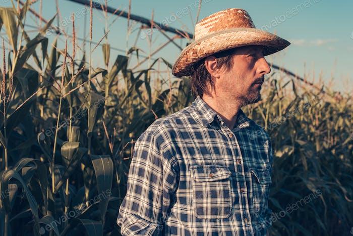Porträt von ernsthaften Agronomen im Maisfeld